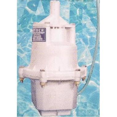 Bomba D'água Submersa 127V ANGER