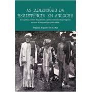 As dimensões da resistência em Angoche: da expansão política do sultanato à política colonialista portuguesa no norte de Moçambique (1842 - 1910)