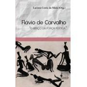 Flávio de Carvalho, org. de Larissa Costa da Mata