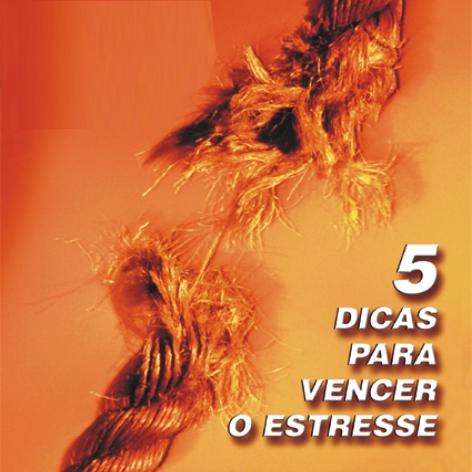 Videocurso Online: 5 DICAS PARA VENCER O ESTRESSE - Luiz Marins  - Videocurso Commit