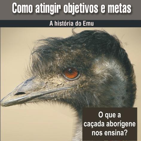 Videocurso Online: COMO ATINGIR OBJETIVOS E METAS - Luiz Marins  - Videocurso Commit