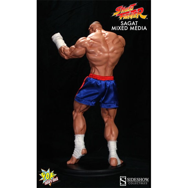 Pop Culture Shock SAGAT Premium Format Street Fighter  - Movie Freaks Collectibles