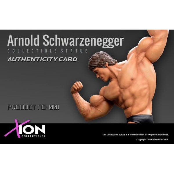 Xion Arnold Schwarzenegger 1/4 scale Custom Statue  - Movie Freaks Collectibles