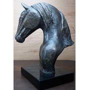 Cavalo Lusitano G