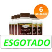 COGUMELO C/ GELEIA REAL 6 FRASCOS + BRINDE + FRETE GRÁTIS