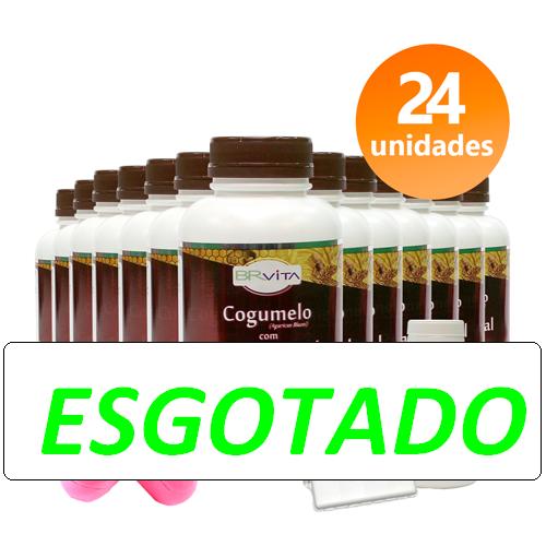 COGUMELO C/ GELEIA REAL 24 FRASCOS + BRINDES + FRETE GRÁTIS