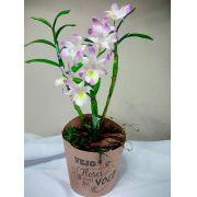 Orquídea Dendobrium