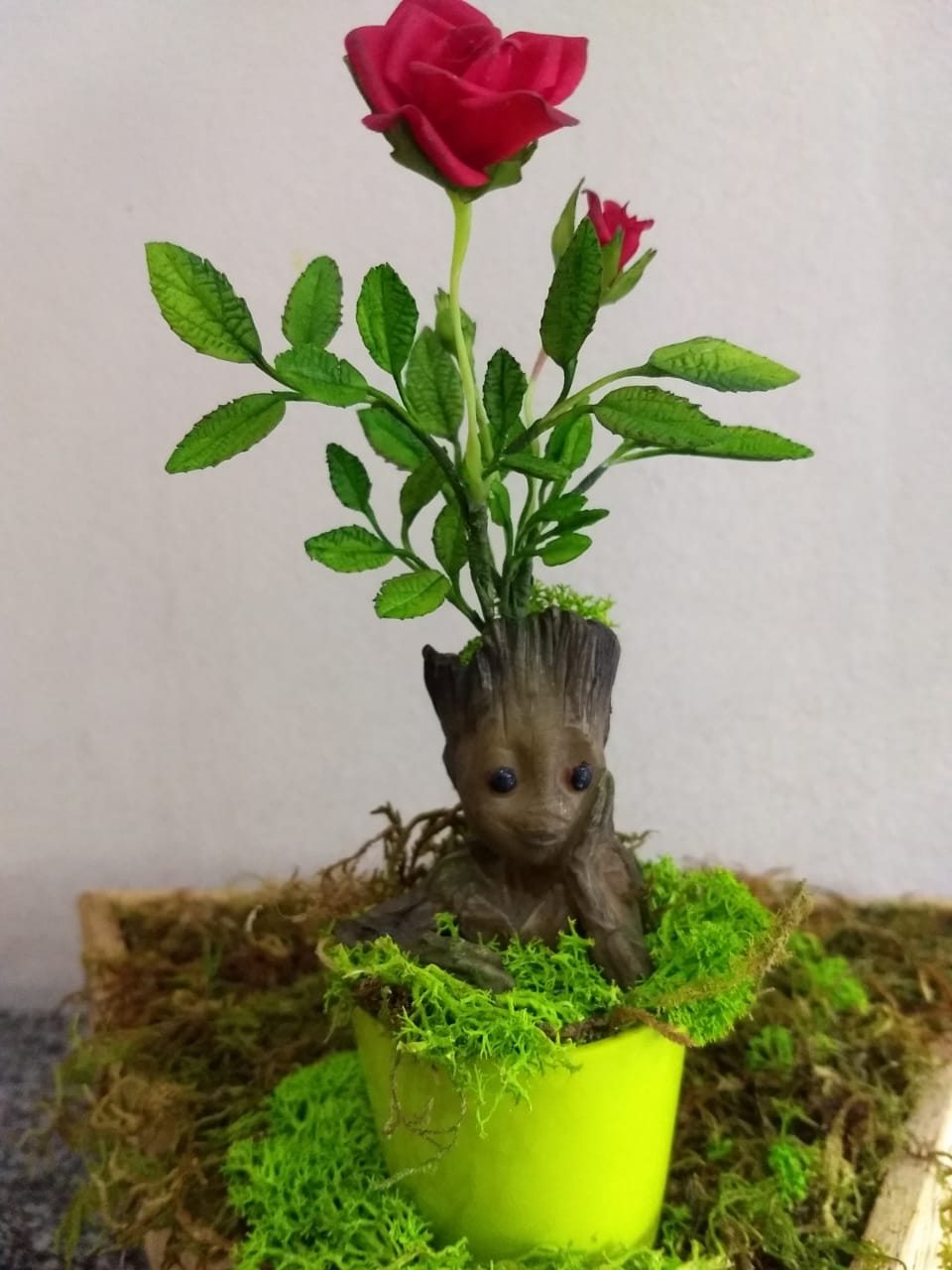 Groot + roseira míni + vasinho magnético