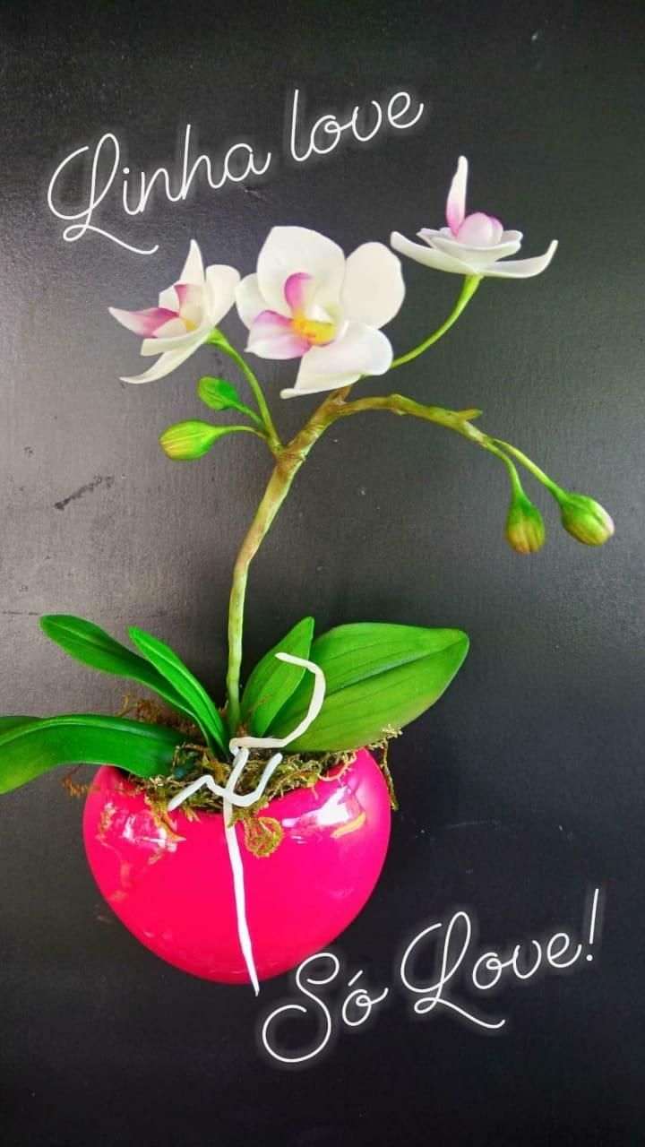 Vaso coração  - Coleção Love míni orquídeas variadas