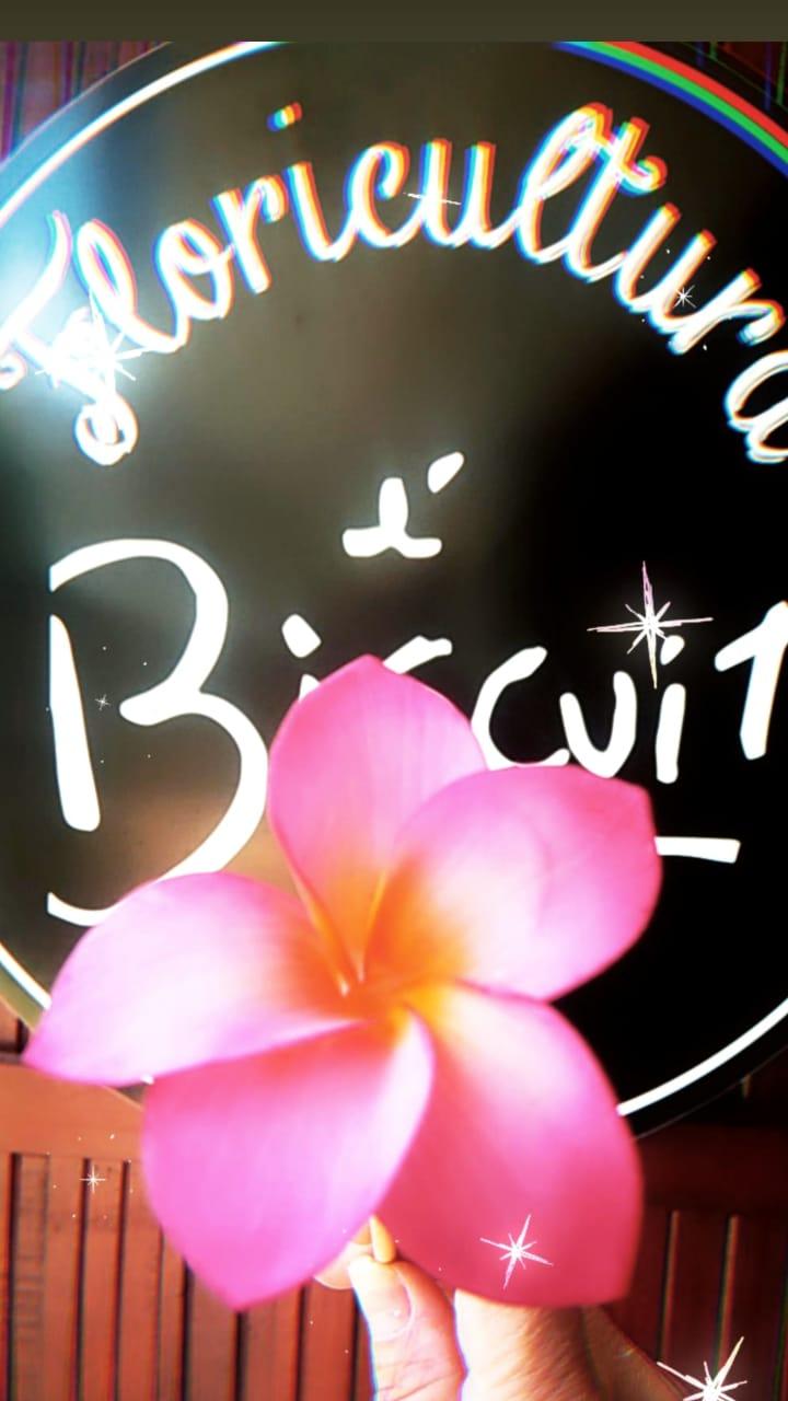Workshop Campinas Mix de Flores - Especial Jasmim