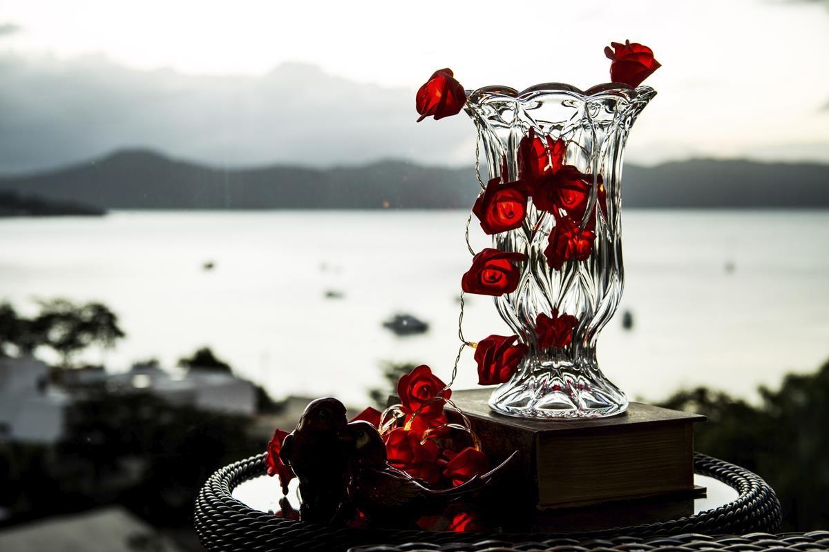 Cordão de luz de Rosas Vermelhas EVA luminária fio de luz 20 leds - Ninis  ... f1d54d71095