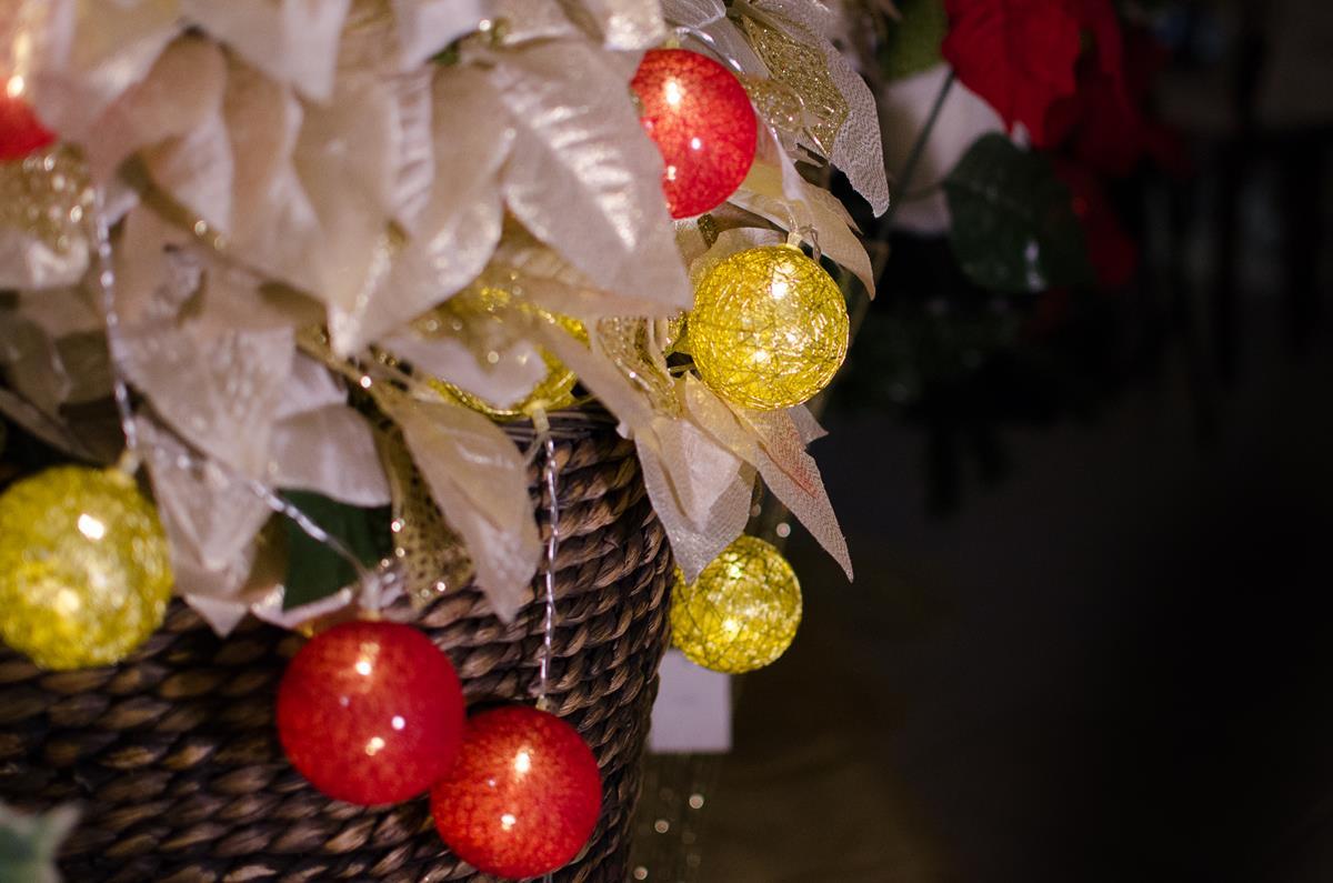 Cordão de luz Natal Redgold - ornamentação árvores decoração festa e mesa  20 leds