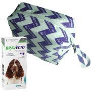 Bravecto MSD 500mg 10 a 20kg Antipulga e Carrapato + Brinde