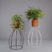 Suporte De Vaso De Parede Botânico Para Plantas Bojudo G