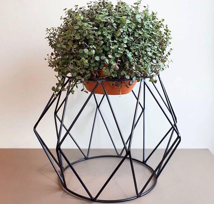 Suporte de vaso botânico para plantas losango P