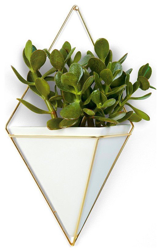 Vaso de parede Trigg Grande - Branco - Umbra