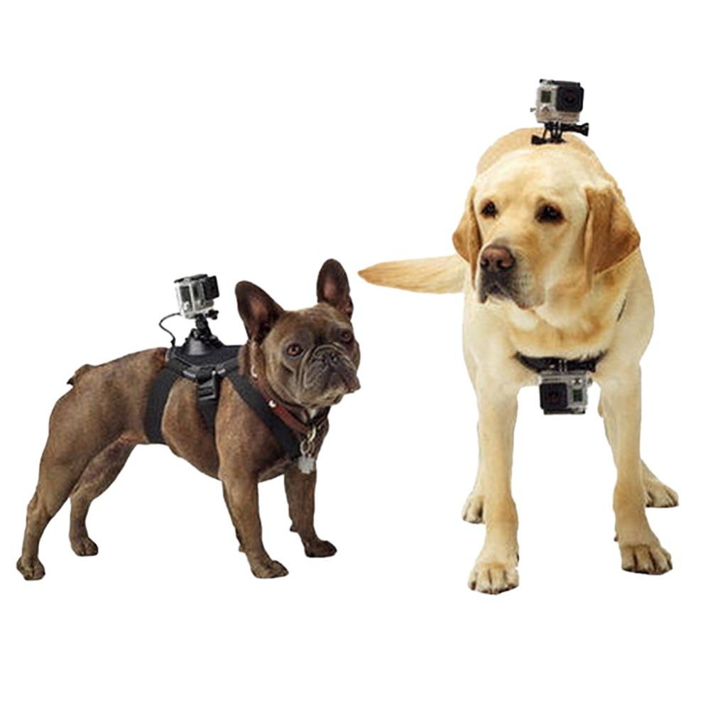 Suporte Canino - Lombar e Peito - GoPro SJCAM Xiaomi Yi Eken