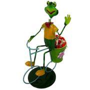 Boneco Sapo com Bicicleta Enfeite e Decoraçao Jardim Casa Flores (BON-M-14)