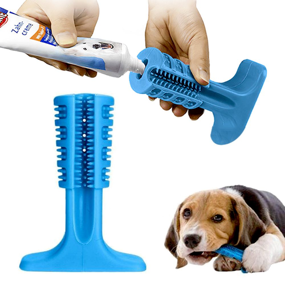 Escova Dentes Mordedor Azul Canina Remove Tartaro Cachorro Cao Pet Limpeza Bucal
