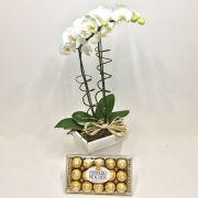 Phalaenópsis e Ferrero Rocher