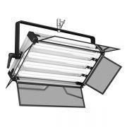 Digital Light 4x55   Standard