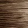 901 - Louro Ultraclaro Acinzentado