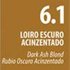 6.1 - Louro Escuro Acizentado