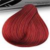 6.66 Louro Escuro Vermelho Intenso Acquaflora