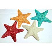 estrelas do mar gde