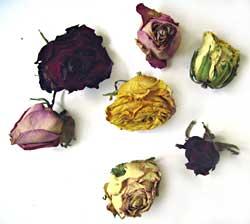 Botão de Rosas desidratadas 10g   - Momento da Arte