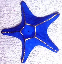 incensários estrela do mar  - Momento da Arte