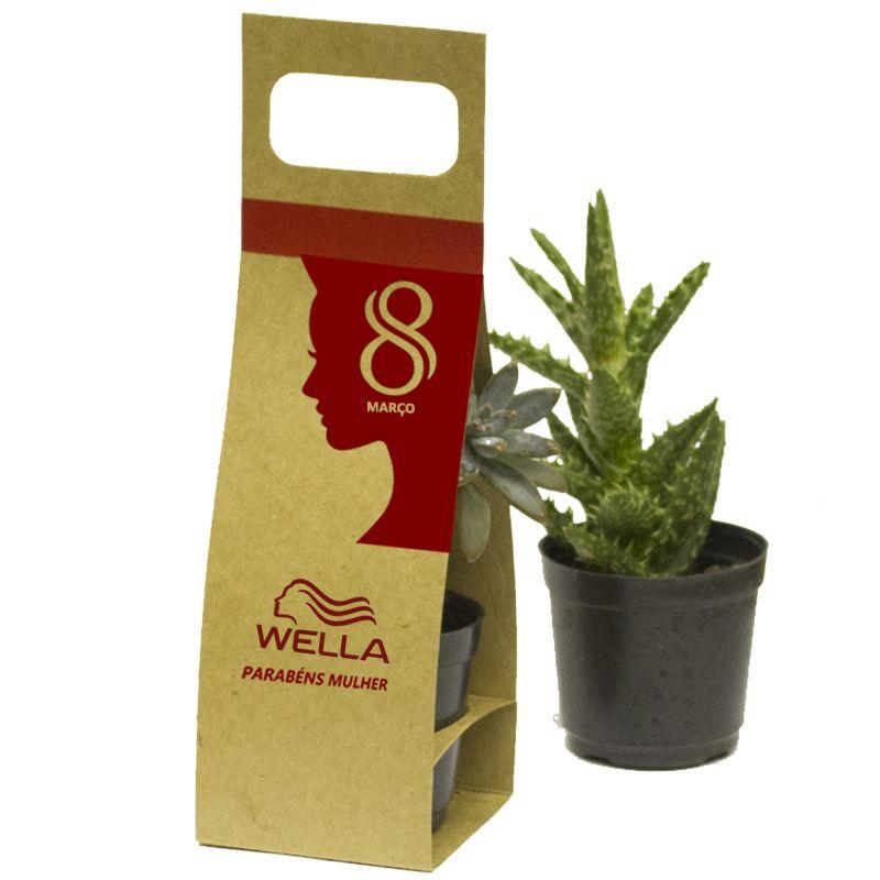 Mini Suculenta Embalagem com Alça Kraft ou Branca - Ref.0014788