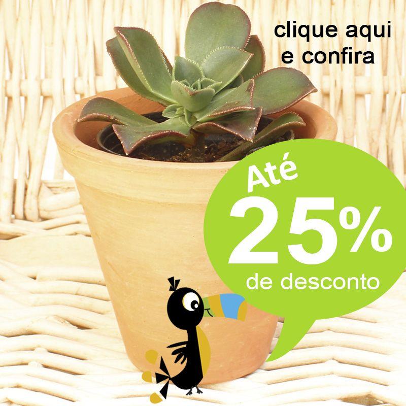 Mini Suculenta Vaso de Barro P - Ref.0014795