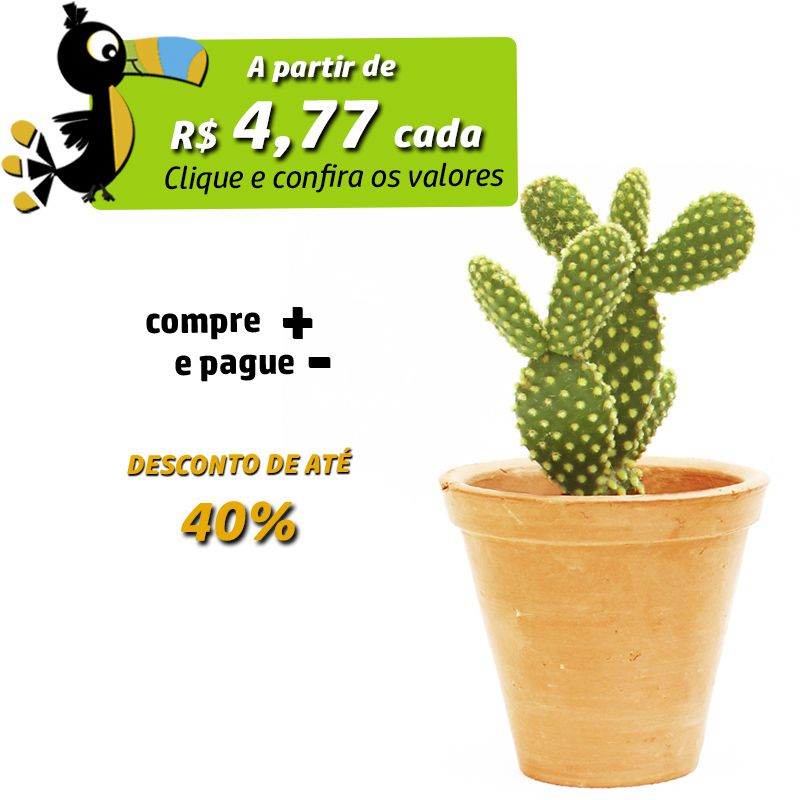 Suculenta e Cactos Vaso de Barro P - Ref.0014795