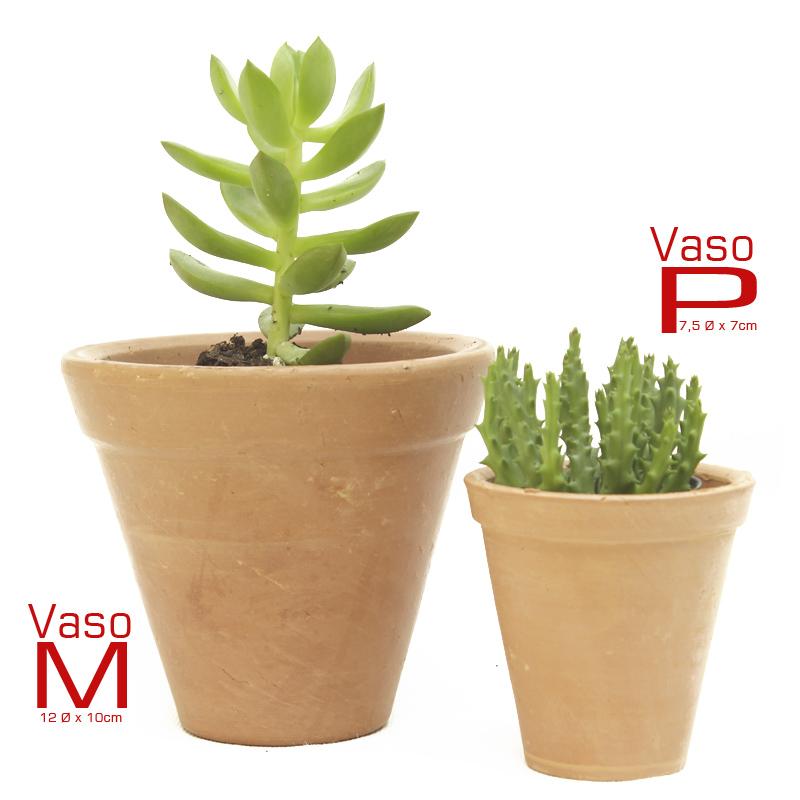Suculenta Vaso de Barro M - Ref.0014796