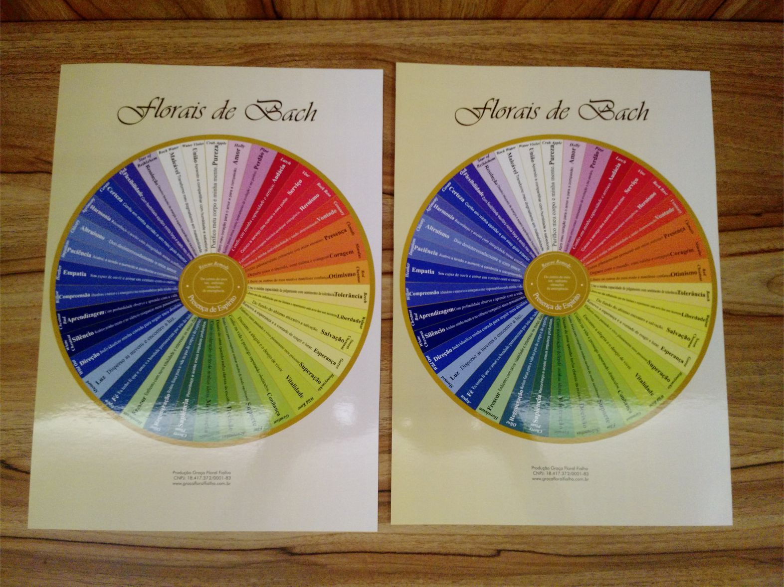 Kit c/ 02 Posters tamanho A4 - Mandala dos Florais de Bach