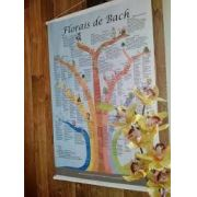 Banner Árvore - 7 Grupos Florais de Bach