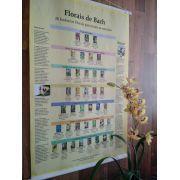 Banner Pirâmide - Florais de bach