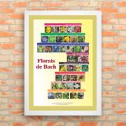 Poster 005 - Florais de Bach