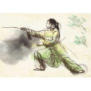 Poster ilustração treinamento de artes marciais - Tai Chi Chuan