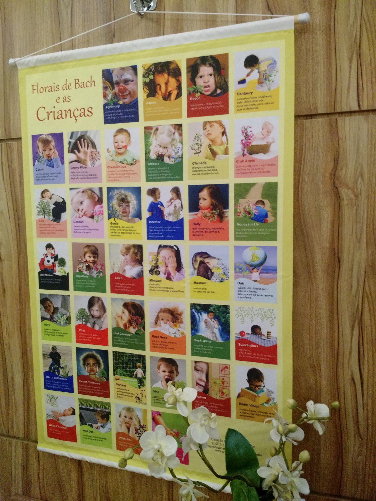 Banner Florais de Bach e as Crianças FRETE GRÁTIS