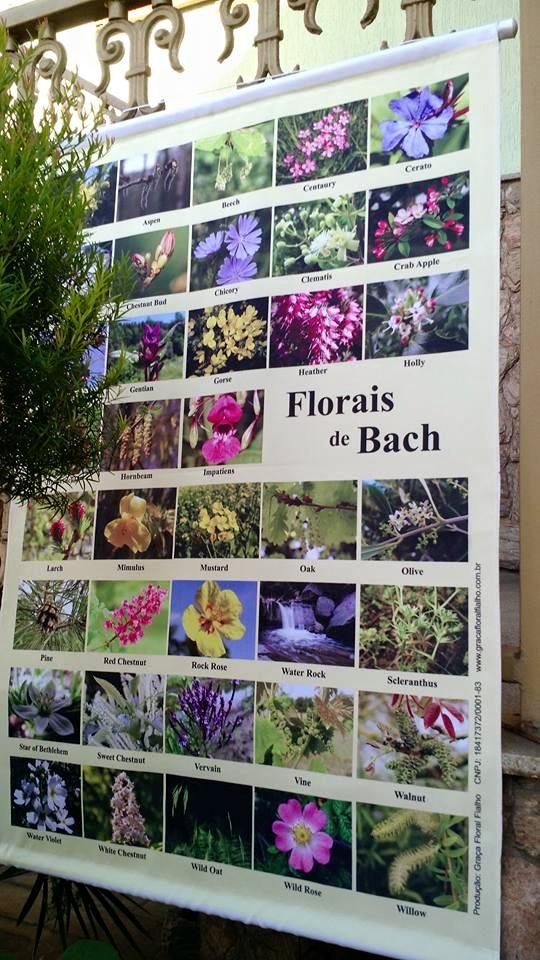 Banner Imagens dos Florais de Bach