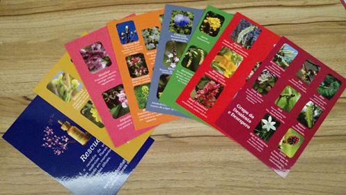 Cards 7 Grupos e Rescue