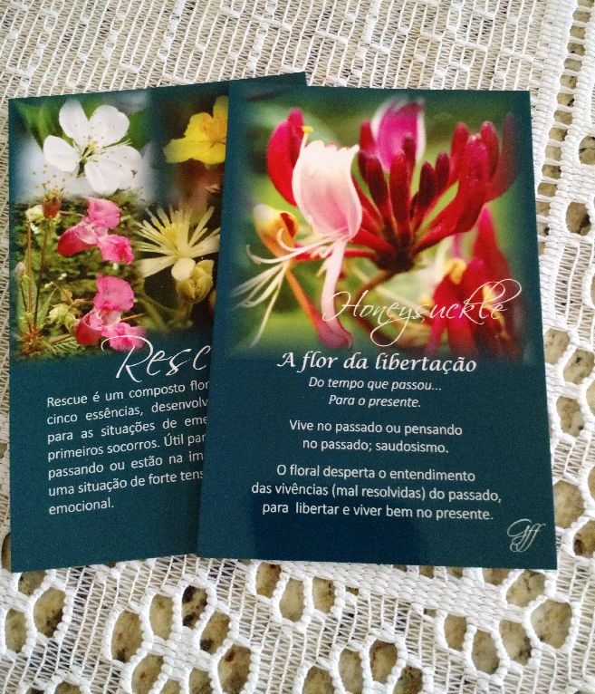 Cards - AS FLORES DE BACH