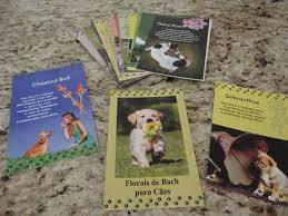 Cards Principais Florais de Bach para Cães