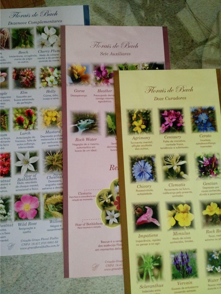 Cards Sistema Florais de Bach -3 Cartelas 14 x 30 cm