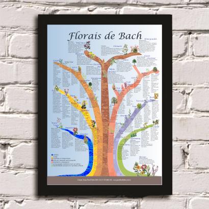 Poster - Árvore Florais de Bach