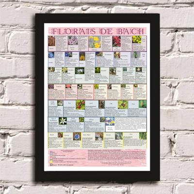 Poster 002  - Florais de Bach