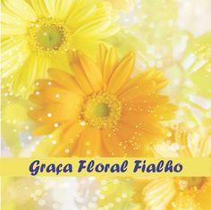 Poster 003 - Pirâmide - Florais de Bach