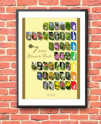 Poster 004 - Florais de Bach